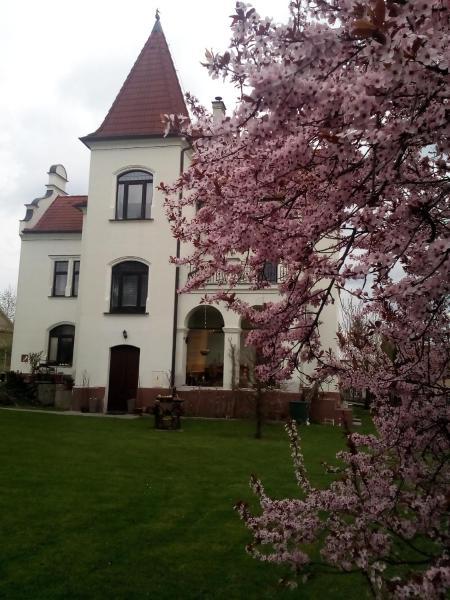 Hotel Pictures: Villa Liduška, Bechyně