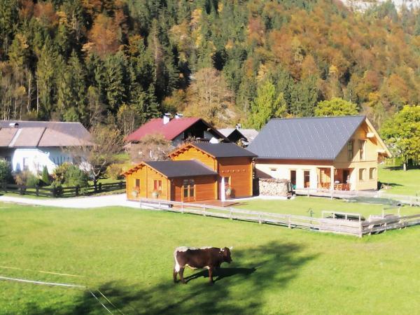 Hotelfoto's: Arcadis, Obertraun