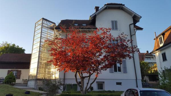 Hotel Pictures: Casa Carmela, Solothurn
