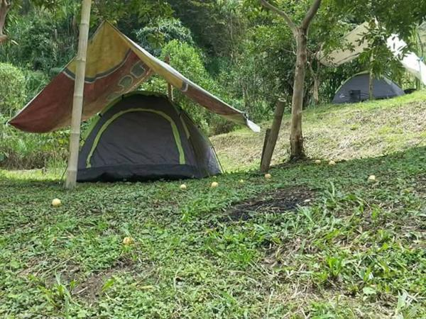 Hotel Pictures: Tanpu Camping, Pereira