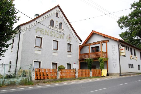 Hotel Pictures: Pension U Dubu, Františkovy Lázně