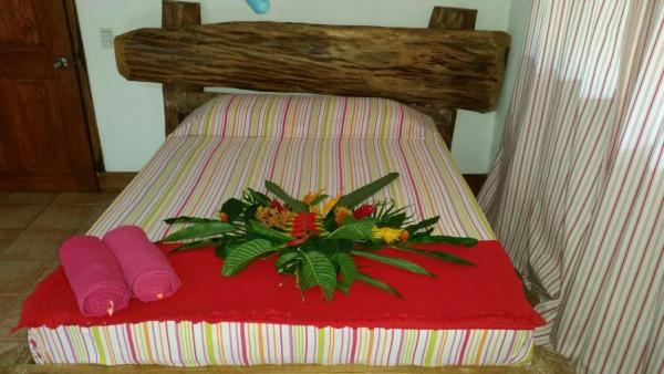 Hotel Pictures: Jungle Experience, Puerto Viejo