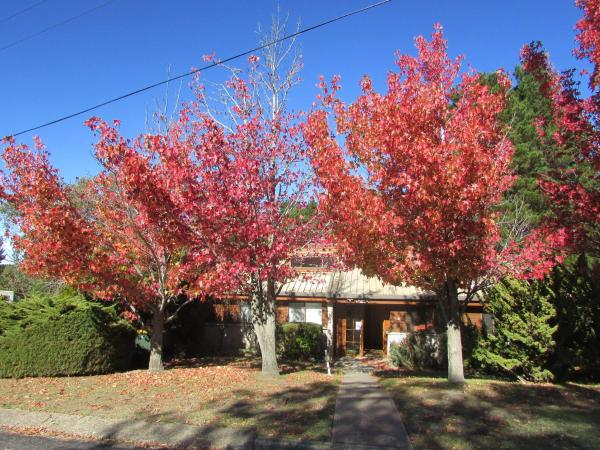 Hotel Pictures: Whispering Pines 3, Jindabyne
