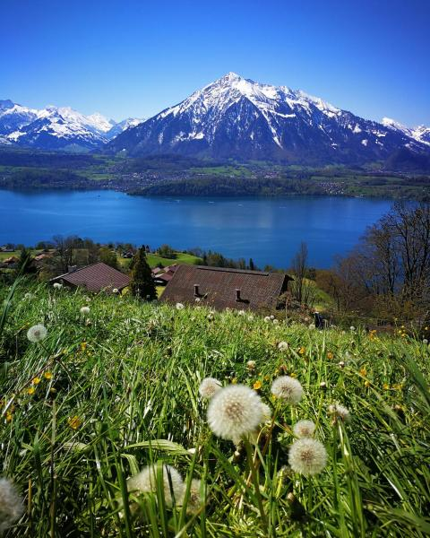 Hotel Pictures: SwissHut Bed&Breakfast, Sigriswil