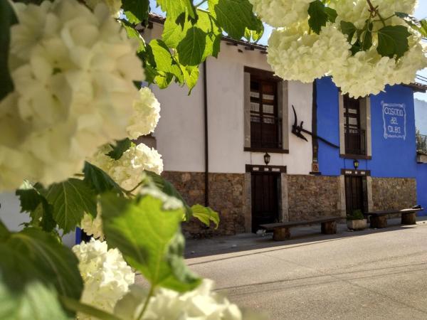 Hotel Pictures: Al Sol Del Narcea, Corias