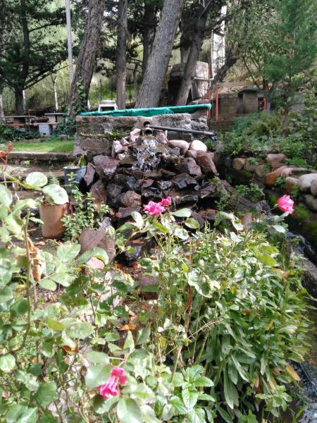 Hotellbilder: Complejo Musquy Nil, Los Árboles