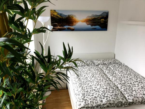 Hotel Pictures: Apartment Downtown, Regensburg