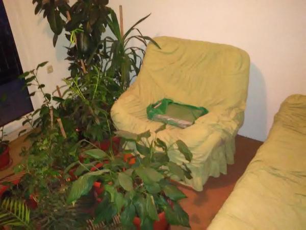 Фотографии отеля: Holiday home Patar, Visoko