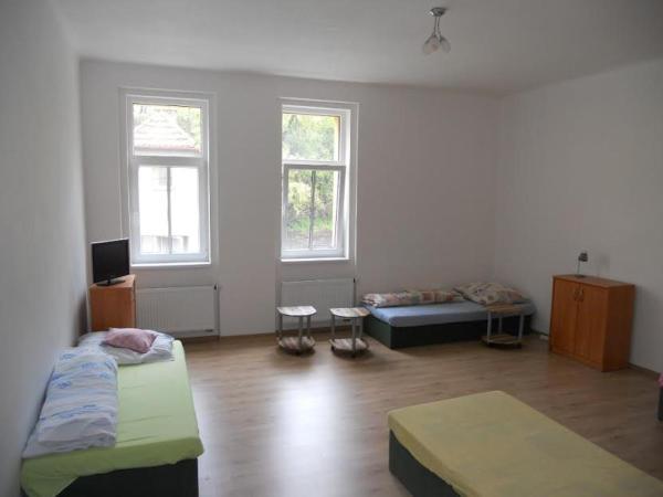 Hotel Pictures: Apartman David, Týn nad Vltavou