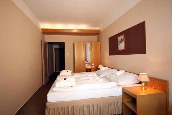 Hotel Pictures: Hotel Medlov, Nové Město na Moravě