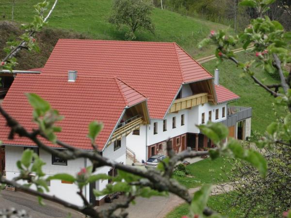 Hotel Pictures: Stinneshof, Oberharmersbach