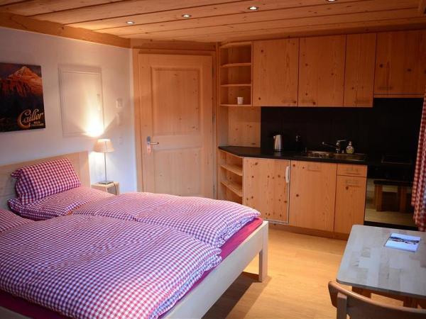 Hotel Pictures: Apartment Monsalvat, Lauenen
