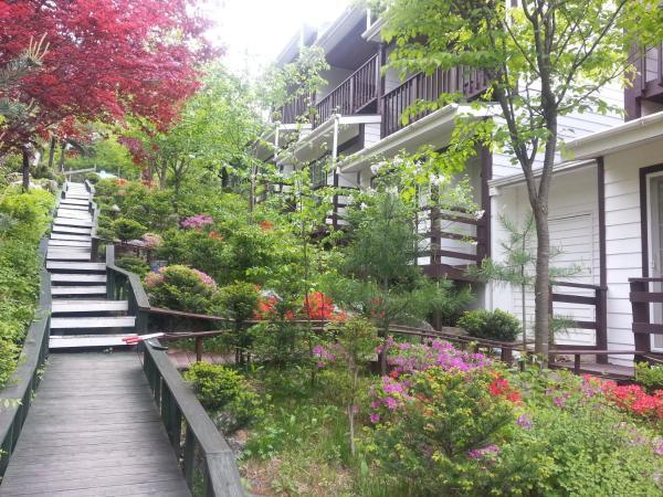 Zdjęcia hotelu: Swiss Pension, Pyeongchang