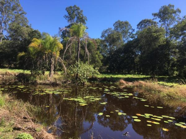Hotel Pictures: Hinterland Lakes, Gympie
