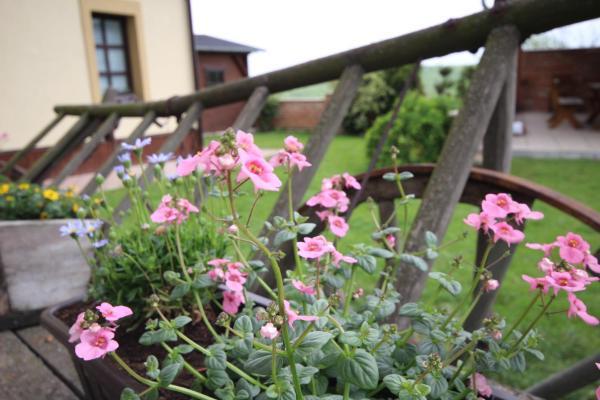 Hotel Pictures: Penzion Klentnice, Klentnice