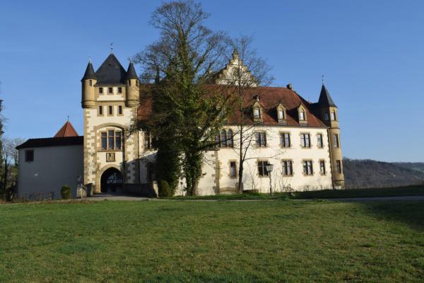 Hotel Pictures: Schlosshotel Götzenburg, Jagsthausen