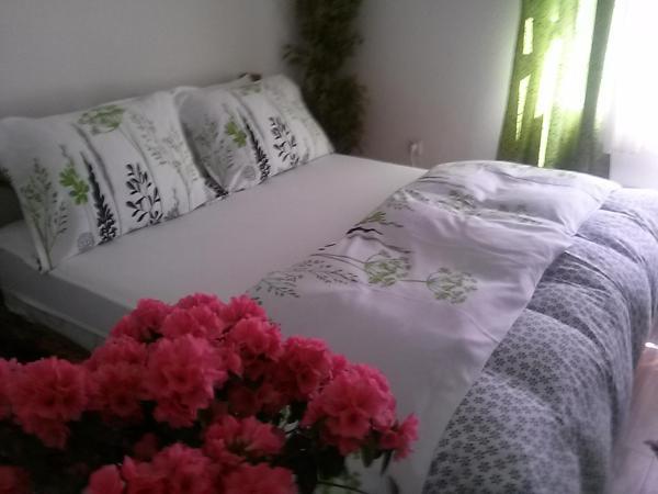 ホテル写真: Apartment NiN Rustik, Banja Luka