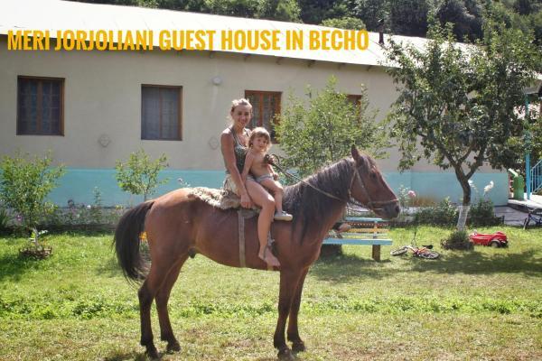 Φωτογραφίες: Meri Jorjoliani Guest House in Becho, Becho