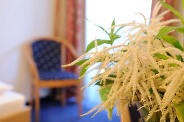 Hotelfoto's: Hotel Blattlhof, Going