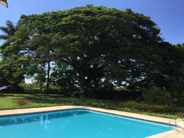 Hotel Pictures: Finca Pernambuco, La Tebaida