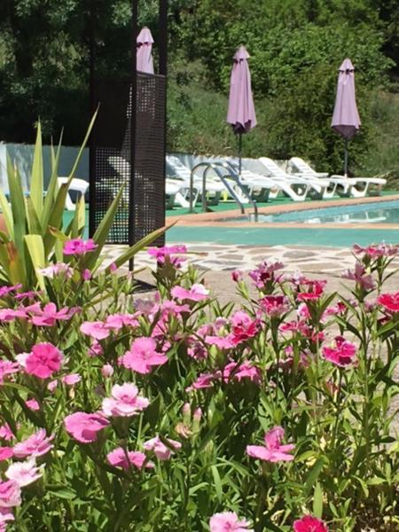 Hotel Pictures: El Molino del Corcho, Cazalla de la Sierra