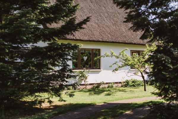 Hotel Pictures: Haus an der Tanne, Wieck