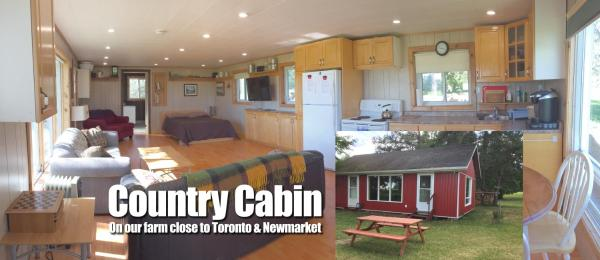 Hotel Pictures: Country Cabin on Farm Near Newmarket Toronto, Schomberg