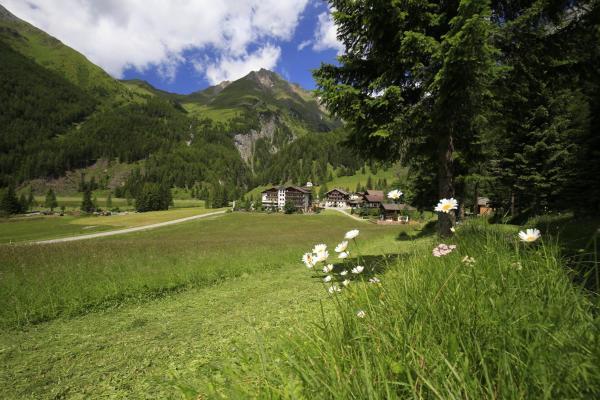 Hotelbilleder: Vital- und Wanderhotel Taurerwirt, Kals am Großglockner