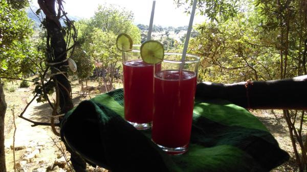 ホテル写真: Knuckles Nature Camp, Bogambara