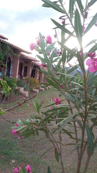 Hotel Pictures: Pousada Chales do Sol, Milho Verde
