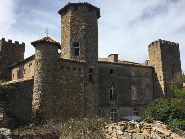 Hotel Pictures: Château d'Agel gite et chambres d'hôtes, Agel