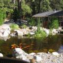 Silver Pines Lodge, Idyllwild