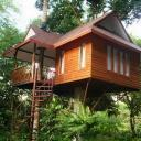 Khao Sok tree-house