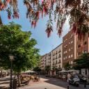 Fotos Apartamentos San Marcos