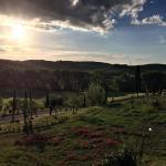 Cordella In Montalcino Wine Resort, Montalcino