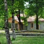 Talistan Forest Park, Talıstan