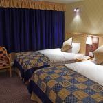 Hotel Pictures: Cabarfeidh Hotel, Stornoway