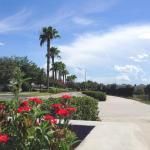 Daulby King 2636,  Orlando