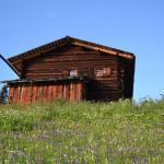 Alphütte, Sertig Döfli