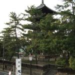 Daibutsukan, Nara