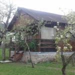 Cabana Maduta,  Chişcău
