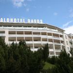 Waldhotel Davos,  Davos