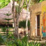 Organic Yoga Mexico,  Akumal
