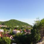 Rodnoy Prichal Guest House,  Arkhipo-Osipovka