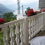 Panoramic Paradise 2, Kotor