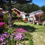 Herbnaeum Pension, Pyeongchang
