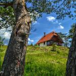 Cottage Vodice,  Zlatibor