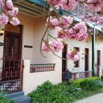 Bank House Mount Victoria Multi,  Mount Victoria
