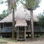 Green Wild Amazon Expedition, Iquitos