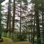 Colonels Retreat, Shimla